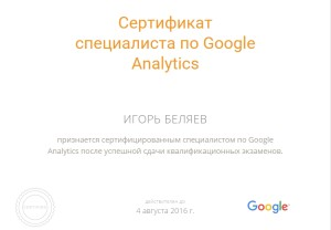 Google Partners - Personal Profile - Analytics